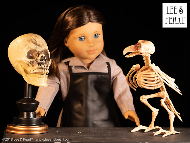 Happy Halloween from Lee & Pearl! We found these ghoulishly great doll-scale items at Dollar Tree!