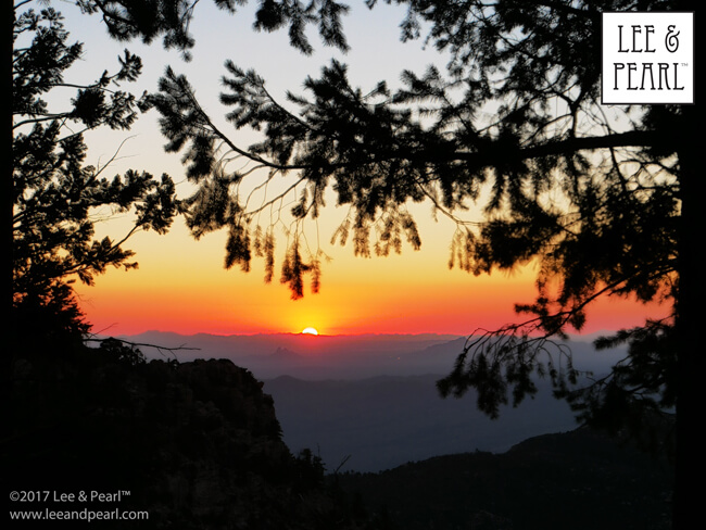 Join Lee & Pearl™ for a month on the road: sunset on Mt. Lemmon in Tucson, AZ.